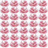Modello di fiori senza cuciture dell'acquerello Fotografie Stock