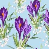 Modello di fiori viola floreale senza cuciture del croco su un fondo blu Fiori ed erba della primavera royalty illustrazione gratis