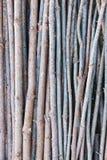 Modello di legno del bastone Immagine Stock