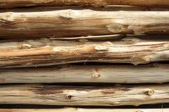 Modello di legno del ceppo come fondo Fotografie Stock