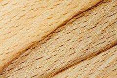 Modello di legno di faggio Immagine Stock