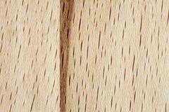 Modello di legno di faggio Immagini Stock