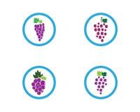 Modello di logo dell'uva illustrazione vettoriale