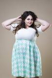 Modello di moda più in abbigliamento casual, donna grassa sul fondo dello studio, ente femminile di peso eccessivo di dimensione fotografia stock libera da diritti