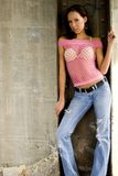 Modello di modo del Brunette Fotografie Stock