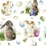 Modello di pasqua dell'acquerello con coniglio Ornamento di festa con il coniglietto, le uova colorate ed i bucaneve isolati su b illustrazione di stock