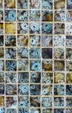 Modello di pietra di corallo naturale del fondo di struttura