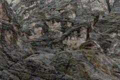 Modello di pietra di struttura del fondo della roccia immagini stock