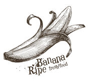 Modello di progettazione di logo di vettore della banana frutta o alimento Immagine Stock Libera da Diritti