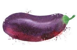 Modello di progettazione di logo di vettore della melanzana verdure Fotografia Stock