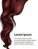 Modello di progettazione di stile di capelli e di cura di capelli Fotografie Stock