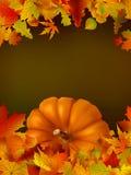 Modello di ringraziamento con lo spazio della copia. EPS8. Fotografia Stock Libera da Diritti