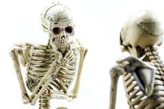 Modello di scheletro dei controllori su fondo bianco Immagini Stock Libere da Diritti