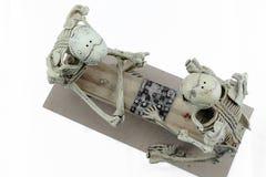 Modello di scheletro dei controllori su fondo bianco Fotografie Stock Libere da Diritti