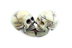 Modello di scheletro di bacio su fondo bianco Fotografia Stock