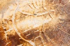 Modello di vecchio legno dall'Asia Fotografia Stock Libera da Diritti