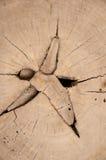 Modello di vecchio legno dall'Asia Fotografie Stock Libere da Diritti