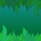Modello di vettore delle foglie Immagini Stock Libere da Diritti