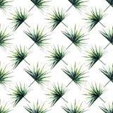 Modello diagonale di bella estate di erbe floreale meravigliosa tropicale verde intenso dell'Hawai di un acquerello delle palme illustrazione vettoriale