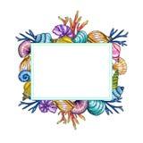 Modello dipinto a mano delle coperture e dei coralli dell'acquerello isolato su fondo bianco royalty illustrazione gratis