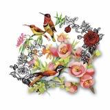 Modello disegnato a mano dell'acquerello con i fiori tropicali di estate di e gli uccelli esotici Fotografie Stock Libere da Diritti
