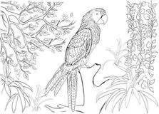 Modello disegnato a mano dell'inchiostro Coloritura del libro da colorare per la pagina adulta per il libro da colorare: molto in Immagini Stock Libere da Diritti