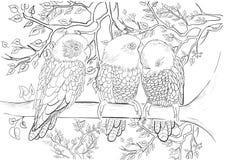 Modello disegnato a mano dell'inchiostro Coloritura del libro da colorare per la pagina adulta per il libro da colorare: molto in Immagine Stock Libera da Diritti