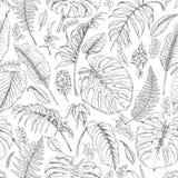 Modello disegnato a mano delle piante tropicali Fotografia Stock Libera da Diritti