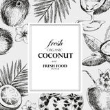 Modello disegnato a mano di progettazione della noce di cocco Illustrazione tropicale dell'alimento di retro di schizzo vettore d Fotografia Stock Libera da Diritti