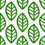 Modello disegnato a mano verde delle foglie su fondo bianco Immagini Stock Libere da Diritti