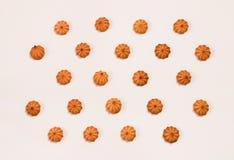 Modello dolce dei biscotti Fotografie Stock