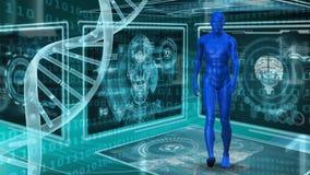 Modello e DNA umani illustrazione vettoriale