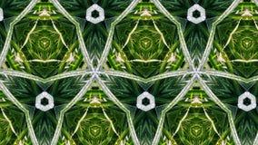 Modello e forma di fiore astratti Fotografia Stock Libera da Diritti