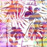 Modello esotico senza cuciture con la palma tropicale nel colore luminoso Fotografia Stock