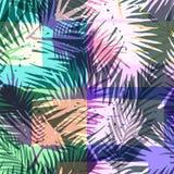 Modello esotico senza cuciture con la palma tropicale nel colore luminoso Fotografia Stock Libera da Diritti