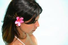 Modello femminile latino caldo Fotografia Stock