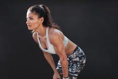 Modello femminile muscolare in abiti sportivi fotografia stock