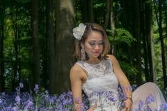 Modello filippino in un legno blu della campana Immagini Stock