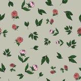 Modello, fiori della peonia e foglie floreali senza cuciture su un fondo grigio, vettore Fotografia Stock Libera da Diritti