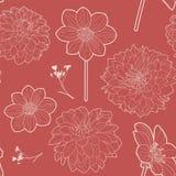 Modello floreale d'annata rosso senza cuciture con l'aster e la margherita Fotografie Stock