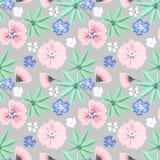 Modello floreale delicato senza cuciture Fiori rosa e blu su fondo grigio chiaro royalty illustrazione gratis