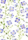Modello floreale dell'acquerello senza cuciture su backgound bianco Fotografie Stock Libere da Diritti