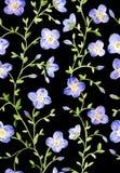 Modello floreale dell'acquerello senza cuciture su backgound nero Fotografia Stock Libera da Diritti