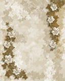 Modello floreale dell'invito del partito o di cerimonia nuziale Fotografia Stock Libera da Diritti