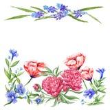 Modello floreale della carta di estate illustrazione vettoriale