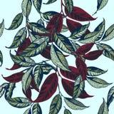 Modello floreale di vettore con verde e stile disegnato a mano delle foglie illustrazione vettoriale
