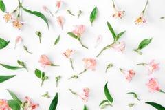 Modello floreale fatto di alstroemeria rosa, delle foglie e dei petali Fotografie Stock Libere da Diritti