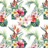 Modello floreale meraviglioso tropicale di erbe verde intenso di estate dell'Hawai dell'foglie di palma tropicali e fiore blu vio illustrazione di stock