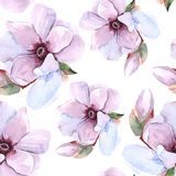 Modello floreale romantico dell'acquerello senza cuciture Fotografia Stock