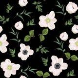 Modello floreale senza cuciture con gli anemoni e molto genere di erbe della molla su fondo nero d'annata royalty illustrazione gratis